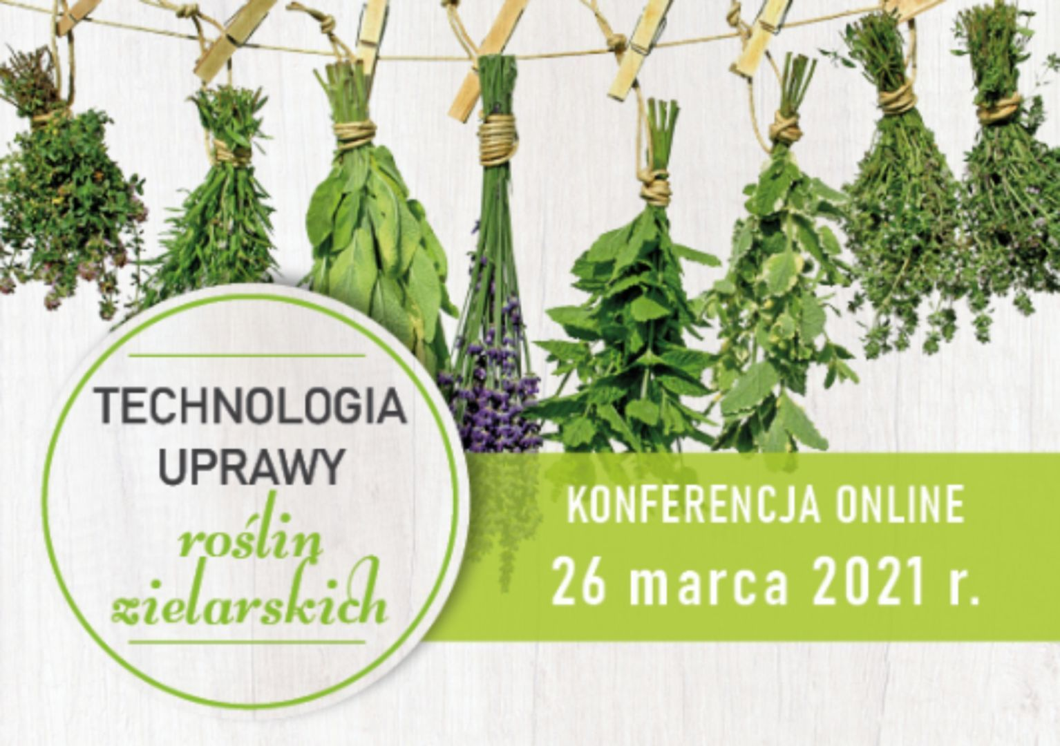 Technologia uprawy roślin zielarskich - KONFERENCJA ONLINE