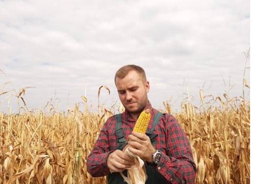 Premie dla młodych rolników - Nabór 31 marca-29 maja 2021 r.