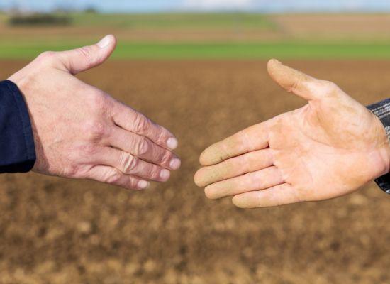 Grupy Producentów Rolnych - tworzenie grup i organizacji producentów